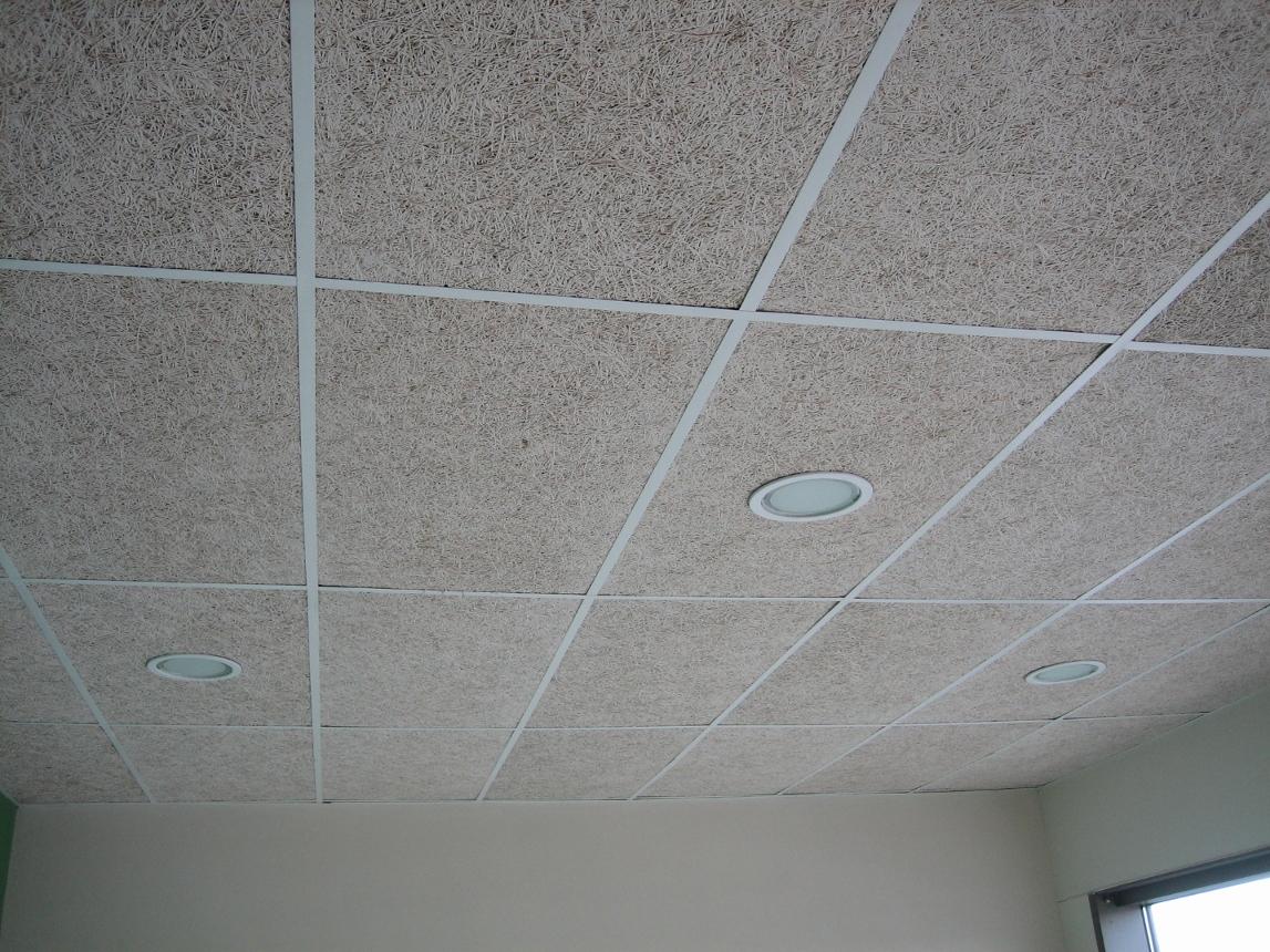 Falso techo de lamas de aluminio elegant precio de falso - Falso techo modular ...